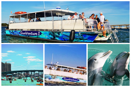 destin dolphin crab island collage